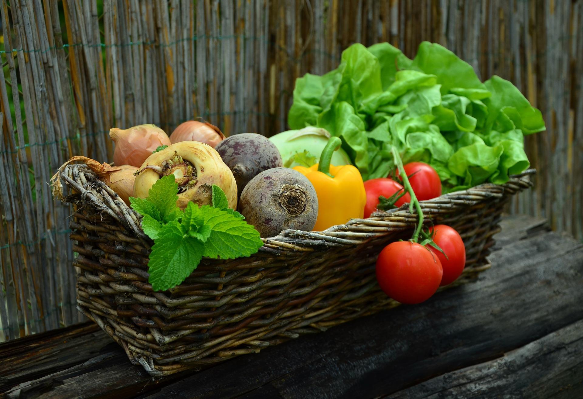 Il menù dell'autunno nutrizionista Genova