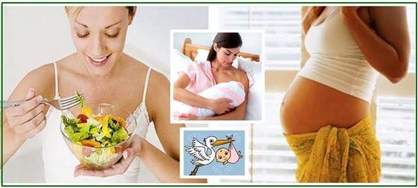 Fitoterapia e alimentazione nelle 3 età della donna